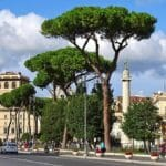 Rome Weather March: What to Pack for Rome in March & much more